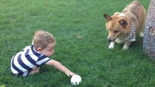 「なに?投げたいの?・・・・・手伝おうか?」子育ては我慢の連続です!