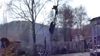 【海外の反応】クマに追いかけられて木に登る人(撮影地:ロシア)