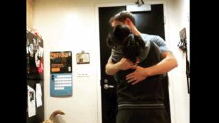 【海外の反応】「ただいま。犬を引き取って来たよ」家族が増えた瞬間