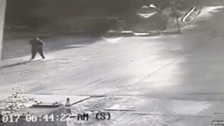 【海外の反応】「監視カメラは見た!」足に噛みついたキツネをブン投げる男性