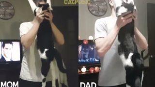 【海外の反応】夫婦で勝負「猫に一番愛されているのはどっちだ?」