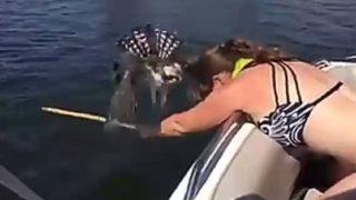 【海外の反応】オスプレイ、別名「海鷹」を助けた女性の勇気ある行動