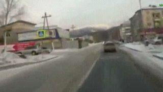 【海外の反応】ドライブレコーダーが捉えた「人間を散歩させる犬」?