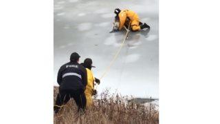 【海外の反応】「薄氷の上の救出劇」凍結した川に落ちた犬を救え!