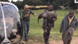 【海外の反応】「小象、空を飛ぶ!」史上初!?ヘリコプターの座席に座った象