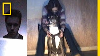 【海外の反応】犬は怒っている人間を見た時に同じ反応をするのか?