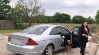 【海外の反応】車で犬を捨てに来た女性を説得してみました…
