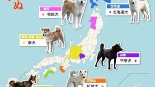 【海外の反応】日本犬マップを見た海外の反応
