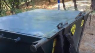 【海外の反応】ゴミ箱からクマ!!
