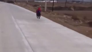 【海外の反応】ワンコに乗って疾走する、あのアメコミ・ヒーロー!