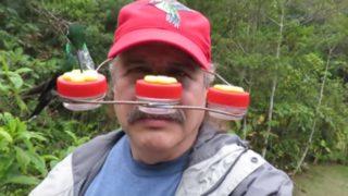 【海外の反応】マニアのための「ハチドリ・エサやり帽」