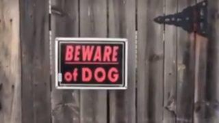 【海外の反応】「猛犬注意」の物々しい警告が掲げられたお宅を訪問すると…