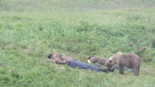 【海外の反応】子熊に起こされ目覚めるオヤジ