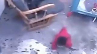 監視カメラは見ていた!「階段から転落寸前の赤ちゃんを救った影のヒーローは、一匹の猫だった」