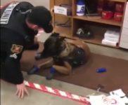 【海外の反応】「できれば内緒にしておきたかった…」アメリカの警察犬の恥ずかしい姿