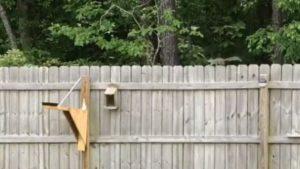 【海外の反応】鳥のエサ台に通い続けたリスを待ち受けていた「運命の発射台」